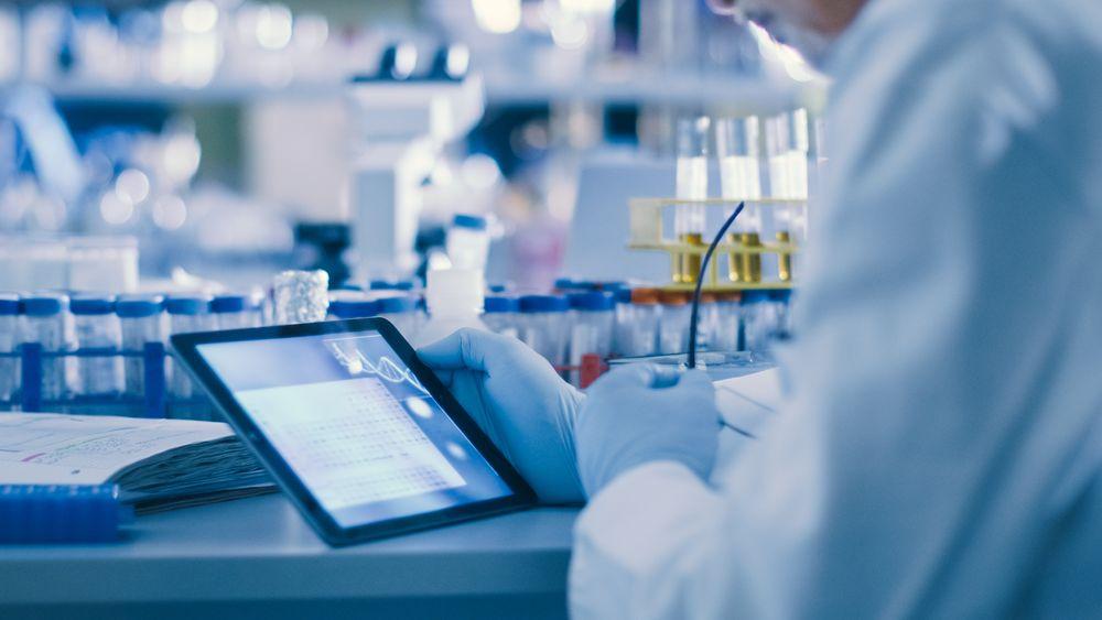 Verteilung von Tumor-Medikamenten nach lokaler Medikamentenlieferung durch Hyperthermie, In Vivo